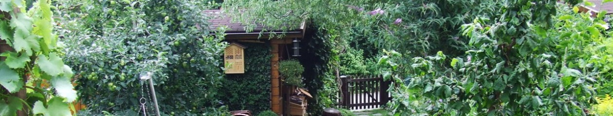 Garten von Karin