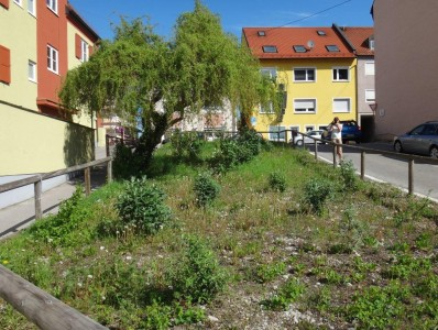 1605_Aktion_Viehmarktplatz_3